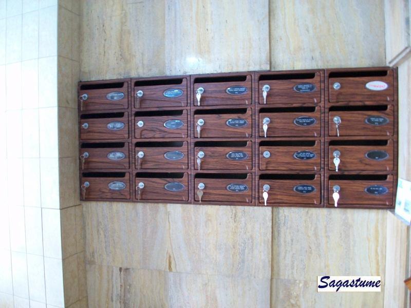 Buzones Arregui modelo Básico H-1507 con cuerpo metálico en color negro y puerta decoración madera etimoe. Tamaño pequeño